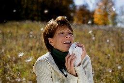 Предотвращает ли мед развитие сенной лихорадки? А также другие мифы об аллергии