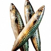 Употребление рыбы жирных сортов значительно сокращает риск смерти от рака предстательной железы