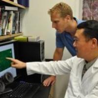 Ультразвук способствует росту клеток костной ткани