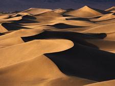 Пустыня. Отдых возможен