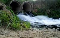 Влияние окружающей среды на здоровье людей