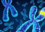 Генетическая подоплека алкоголизма