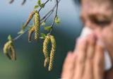Аллергия: слезы по весне