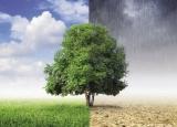 Изменение климата: спор не окончен