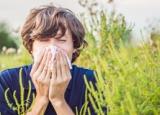 Алергени як ліки: що потрібно знати про алерген-специфічну імунотерапію