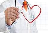 Сердечно-сосудистая система: «элементарная» поддержка