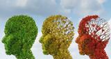 Как замедлить старение мозга?