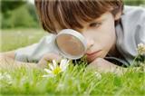 Любопытство —  двигатель прогресса
