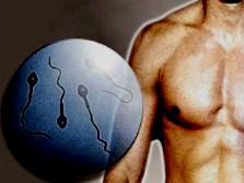 Неправильный образ жизни не вредит мужской фертильности