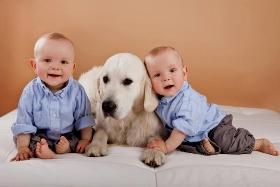 Ученые нашли причину, почему домашние собаки защищают от астмы и инфекции