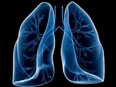 Генетические исследования нашли ключ к редкому заболеванию легких