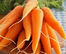 Морковь поможет остановить рак простаты