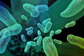 Некоторые пробиотики могут помочь женщинам похудеть