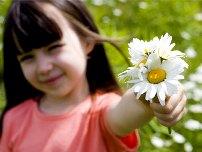 Нанотехнологии против аллергии на пыльцу