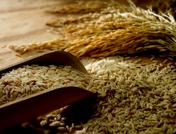 Рисовые отруби снижают заболеваемость раком