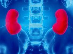 Снижение артериального давления предотвращает сердечно-сосудистые события у людей с заболеваниями почек