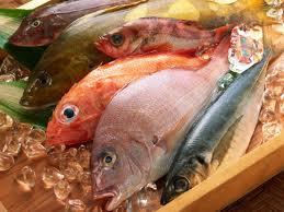 Медики утверждают, что морская рыба гораздо безопаснее речной