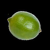 Размер твоего ребенка примерно —  как плод лайма