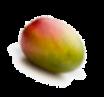 Размер твоего ребенка — как плод манго